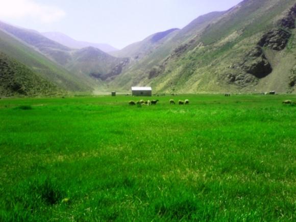 تپه باستانی قلعه کش آمل