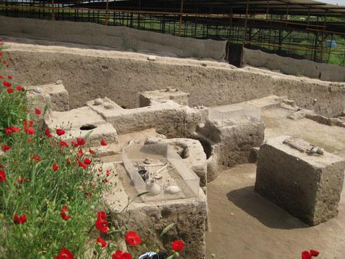 سایت موزه گوهر تپه