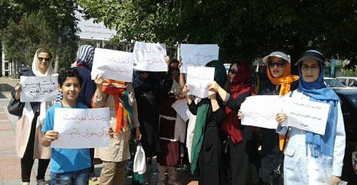 اعتراض فعالان محیط زیست به قطع درختان در ساری