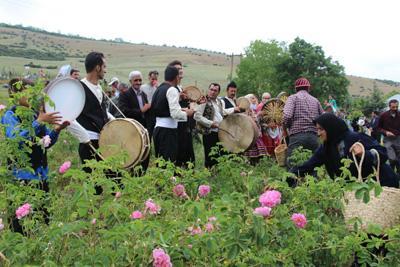 دومین جشنواره گل محمدی و گیاهان دارویی در مازندران برگزار می شود